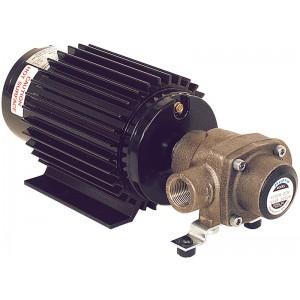 """3/4"""" NPT Ni-Resist 12 Volt Electric 4-Roller Pump"""