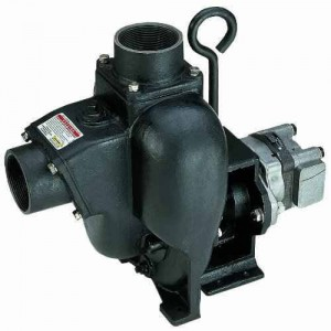 "Gresen Hydraulic Engine Cast Iron Pump with 3"" NPT"