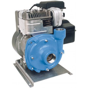 "5.5 HP Briggs & Stratton Gas Cast Iron Centrifugal Pump with 1-1/2"" NPT Inlet x 1-1/4"" NPT Outlet"