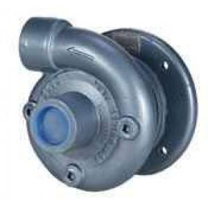 "5 HP Gas Cast Iron Transfer Pump -  2"" NPT Inlet x 2"" NPT Outlet"