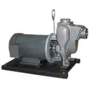 """3 HP Three Phase Electric Engine Stainless Steel Pump with 2"""" NPT"""