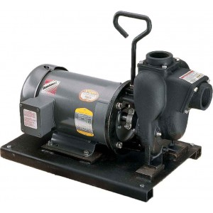 """3 HP Three Phase Electric Engine Cast Iron Pump with 2"""" NPT"""