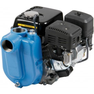 """6.5 HP PowerPro Gas Cast Iron Centrifugal Pump with 2"""" NPT Inlet x 2"""" NPT Outlet"""