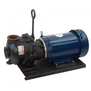 "10 HP Single Phase Electric Engine Cast Iron Pump with 3"" NPT"